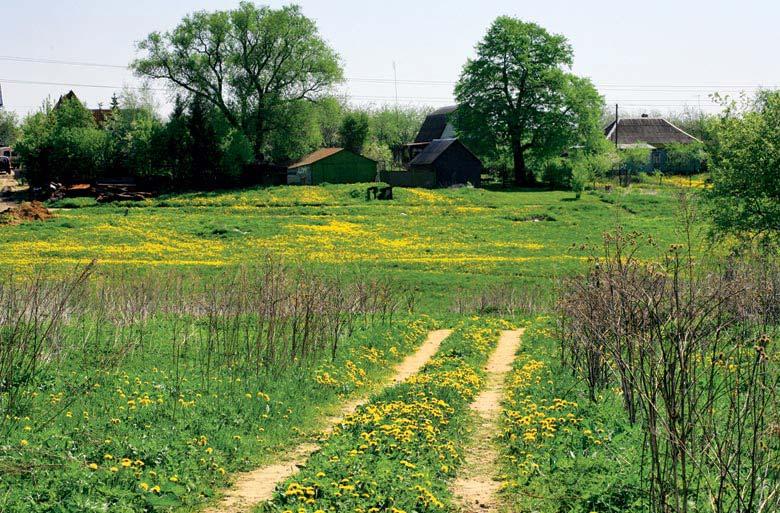 http://turpohod.narod.ru/treks/ser_chep-cheh/chep-cheh_20-may-07_foto/pic04.jpg